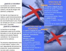 TRIPTICO COCAINA Y HEROINA 2
